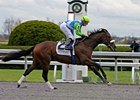 Lentenor Has Jan. 20 Gulfstream Turf Date