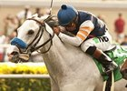 Egg Drop Heads Field for Goldikova Stakes