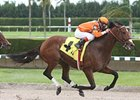 Florida Million Program Set at Calder