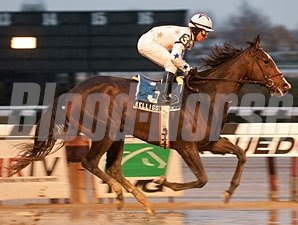 Kelli Got Frosty wins the 2012 East View Stakes.