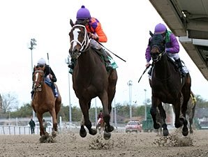 Summer Applause Tops Six-Horse FG Oaks Field