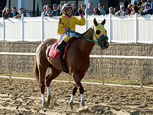 Rapid Redux Retired, Honored by MJC