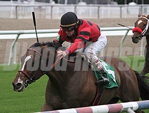 String King wins the 2013 Mr. Sulu Stakes.