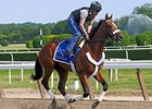 Mucho Macho Man: Blame Him on the Rios
