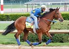 Trainer Rodriguez Guides Vyjack at Churchill