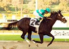Zenyatta, Tiago Eye Hollywood Stakes