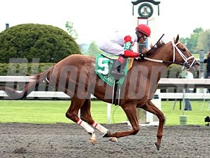 Lonesome Street wins the 2012 Commonwealth Stakes.