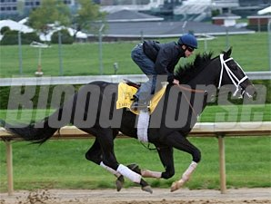 I Want Revenge works at Churchill Downs April 14, 2009.