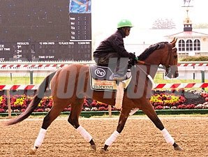 Goldencents at Pimlico, May 9, 2013.