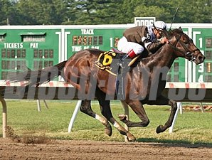 Afleet Express wins the 2010 Pegasus.