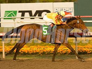 Turbulent Descent wins the 2010 Hollywood Starlet.