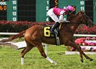 'Hops' Favored For Hanshin Cup