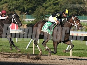 Todd Got Even wins the 2010 Eillo Stakes.