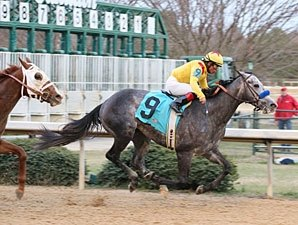 Conveyance Ready to Deliver in Sunland Derby