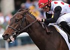 Albertrani Puts Brilliant Speed Back On Turf