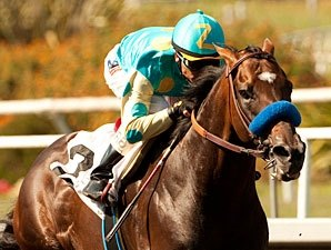 Paynter, Liaison Drill in Tandem at Del Mar