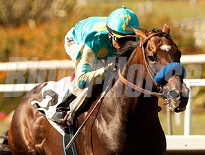 Paynter Allowance Win, June 14, 2013.