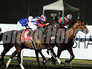 Victoire Pisa wins the 2011 Dubai World Cup.