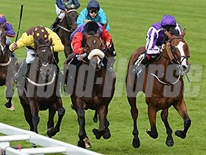 Leading Light wins the 2014 Gold Cup at Royal Ascot.