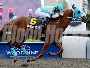 Essence Hit Man wins the 2010 Queenston Stakes.