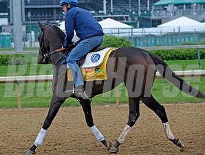 Brilliant Speed - Churchill Downs, 05/04/11