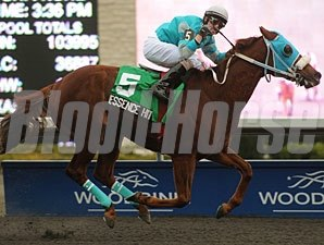 Essence Hit Man wins the 2011 Kennedy Road.
