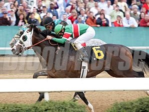 Silver Edition wins the 2009 Hot Springs (deadheat with Red Hot N Gold).