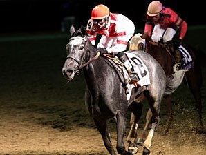 Breeders' Cup Offers Ladies' Classic Contest