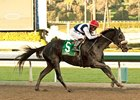 Eblouissante Could Dazzle in Shuvee Return