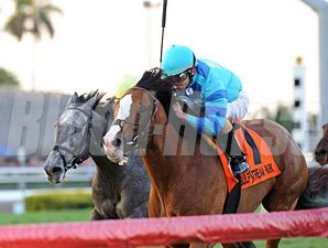 Get Stormy wins the 2012 Gulfstream Park Turf Handicap.
