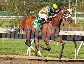 Mucho Macho Man Maiden Win 09/19/10