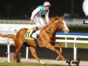 Cityscape Romps in Dubai Duty Free