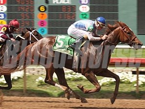 Sweet Relish wins the 2009 Cinemine Stakes.