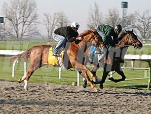 Terrain works at Keeneland on April 4, 2009.