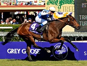 Goldikova Favored to Defend Mile Title