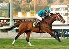 Finnegans Wake Moves to Dirt for Gold Cup