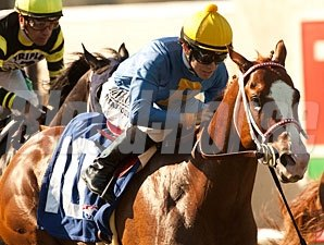 Dry Summer wins the 2012 Oak Tree Juvenile Turf Stakes.