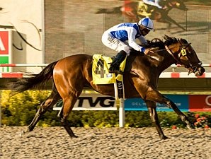 Man o' War Runners Top Juvenile Ranks
