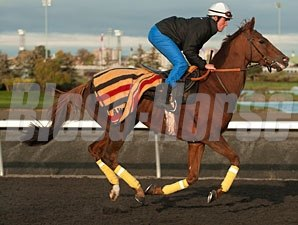 Seismos - Woodbine, October 23, 2013.