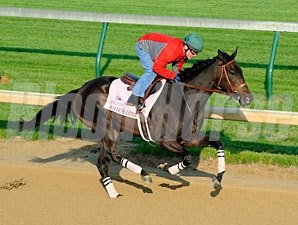 Amie's Dini works towards the Kentucky Oaks.