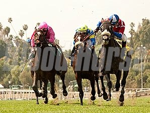 Fire With Fire wins the 2014 San Luis Rey.