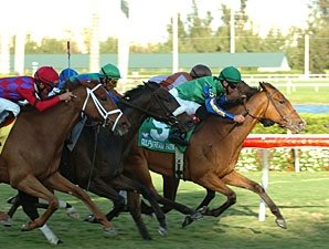 Mauralakana Wins Very One Handicap