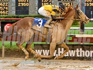Awesome Gem wins the 2009 Hawthorne Gold Cup.