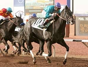 Coming Next Spring: The Sunland Derby