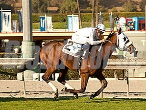 Susans Express win the 2014 California Cup Oaks.