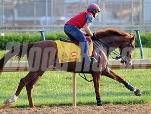 Daddy Long Legs - Churchill Downs May 4, 2012.