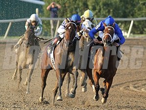 My Miss Aurelia wins the 2012 Cotillion Stakes.