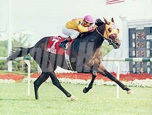 Mecke in the 1996 Arlington Million.