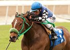 Stormy Lucy, Rusty Slipper Meet in Frankel