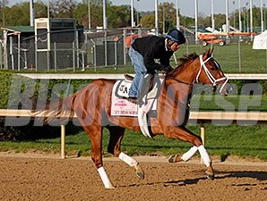My Miss Sophia - Churchill Downs, April 23, 2014.